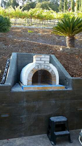 Built In Pizza Oven (2)