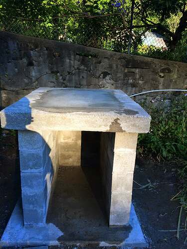 Garden Wood Fired Pizza Oven (32)