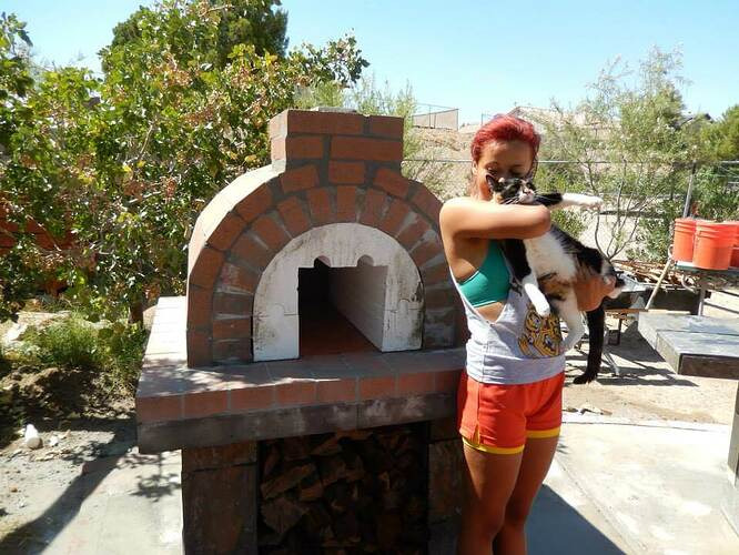 Build Your Own Brick Pizza Oven (23)