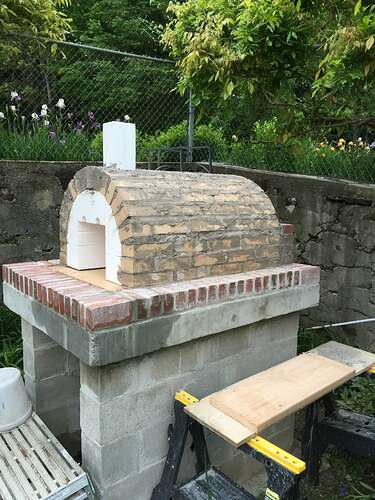 Garden Wood Fired Pizza Oven (49)