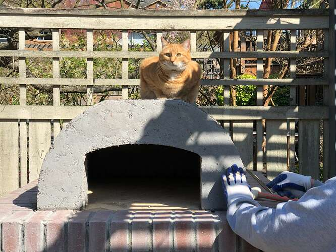 Wood Fired Bread Oven (44)
