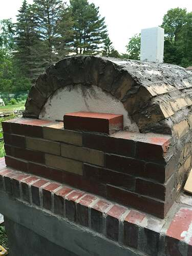 Garden Wood Fired Pizza Oven (50)