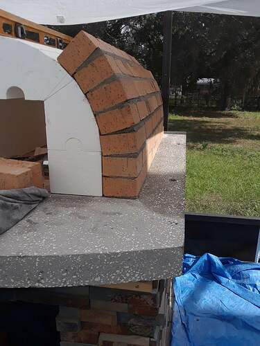 Building A Pizza Oven (100)