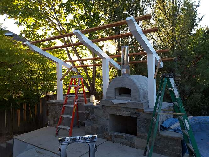 Gas Pizza Oven (48)