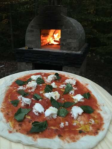 Wood Fired Brick Oven (119)