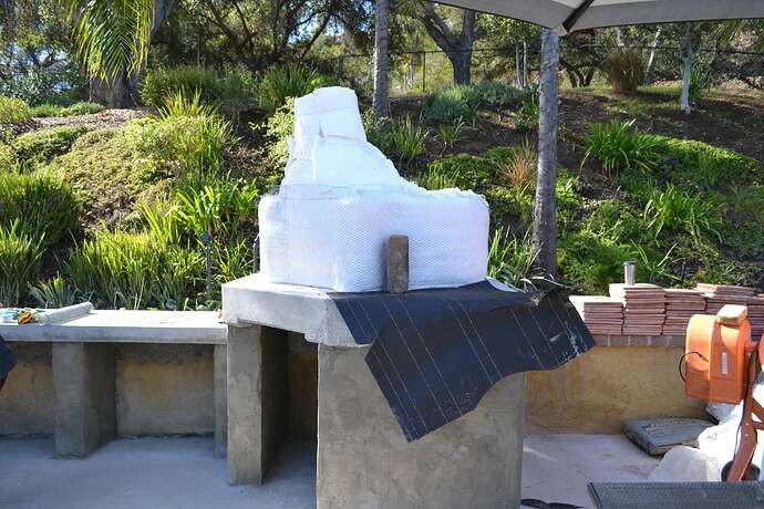 Wood Fire Pizza Oven (49)