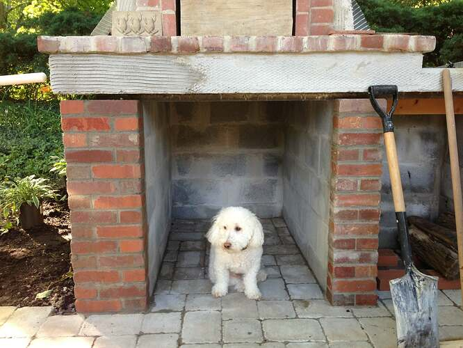 Firewood Pizza Oven (10)