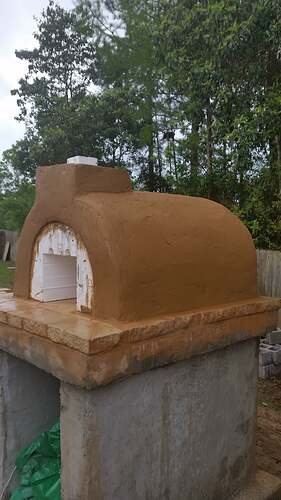 DIY Wood Fired Oven (18)