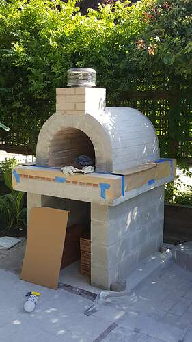 Wood Pizza Oven (19)