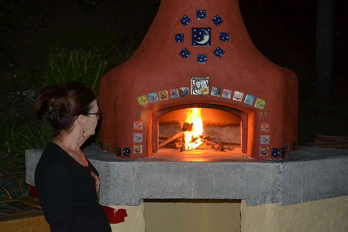 Wood Fire Pizza Oven (86)