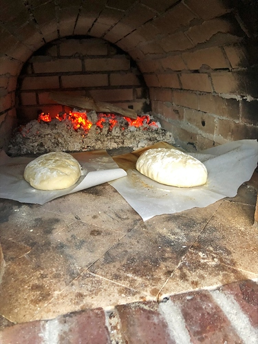 Pizza oven pictures (29)