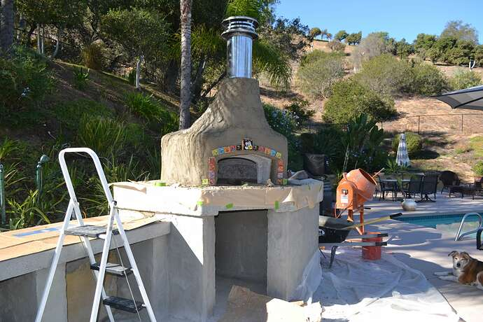 Wood Fire Pizza Oven (66)