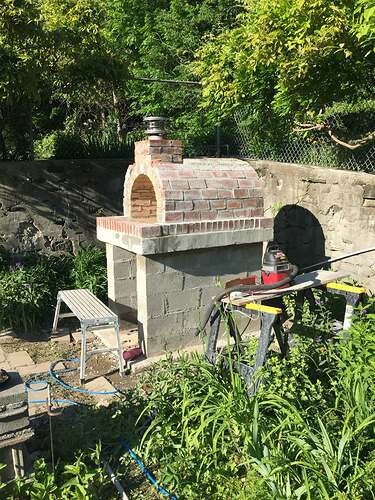 Garden Wood Fired Pizza Oven (60)