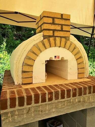 Large Outdoor Wood Burning Pizza Oven (15)