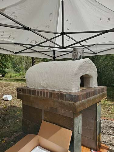 Outdoor Wood Burning Pizza Oven (18)