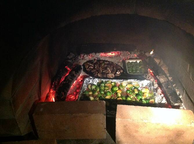 Outdoor Wood Fired Oven (50)